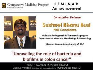 Seminar - Susheel Bhanu Busi @ Discovery Ridge S101