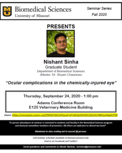 Seminar - Nishant Sinha @ Adams Conference Center